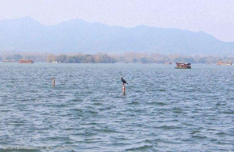 游人杭州西湖