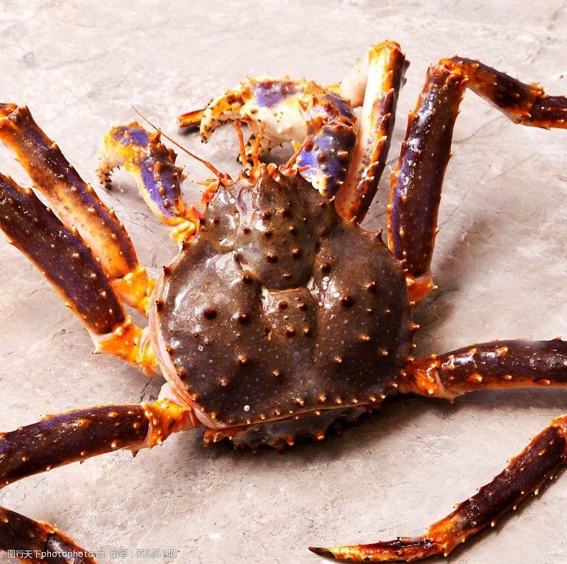 帝王蟹蜘蛛蟹
