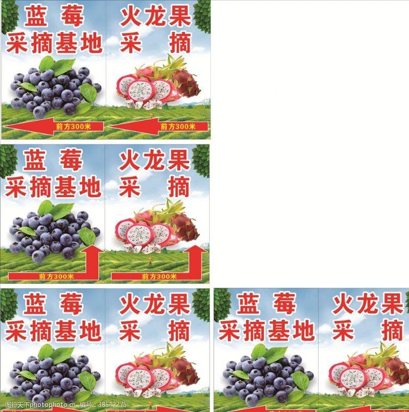 蔬菜园采摘节