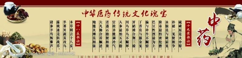 中医药文化中医十九为十八反