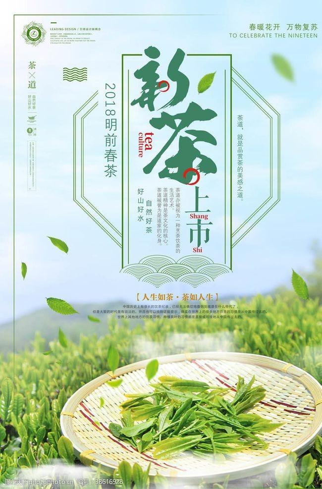 茶画册茶叶海报