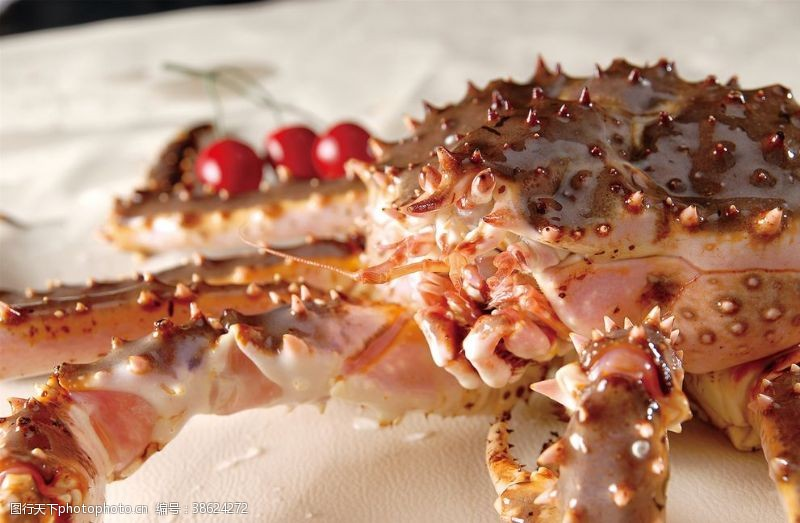 帝王蟹背景