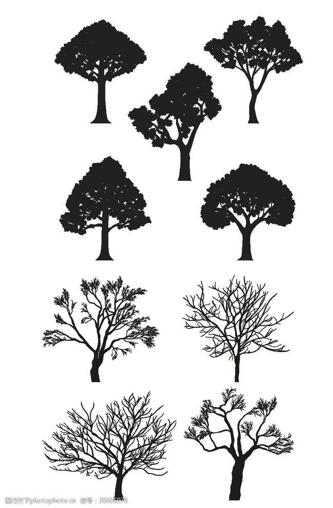 树木卡通卡通大树剪影