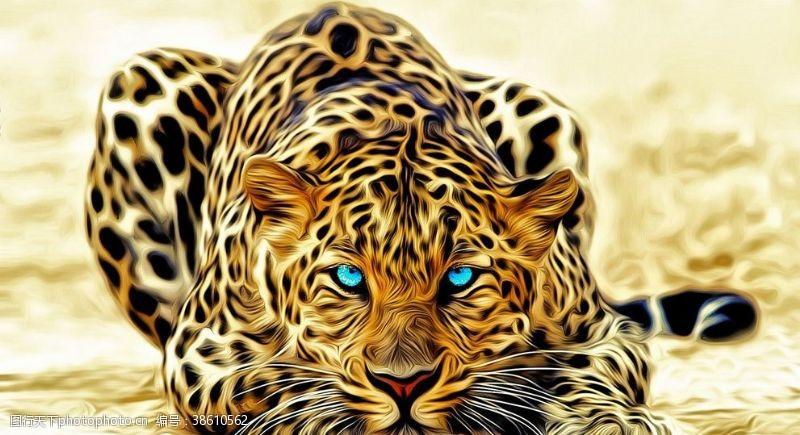 蓝眼睛花豹