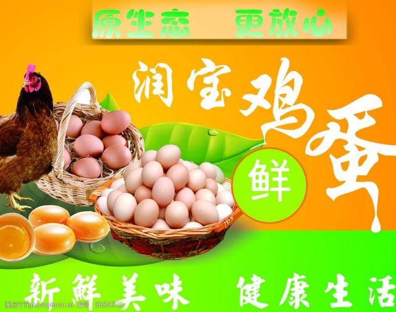 鸡蛋吊牌鸡蛋