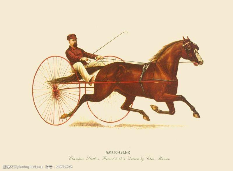 欧美设计马车