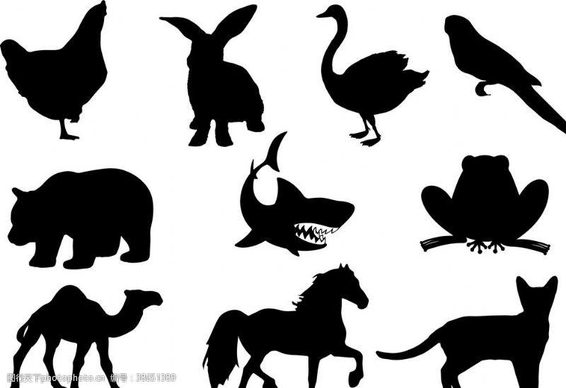 ai元素 动物剪影大全黑白矢量图图片