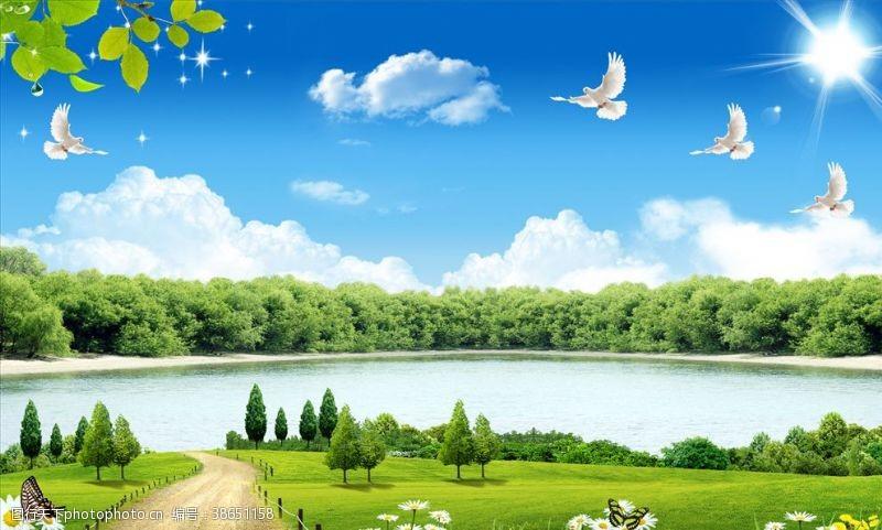 鸽子山水画树背景墙