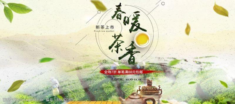 佛山新茶新茶上市