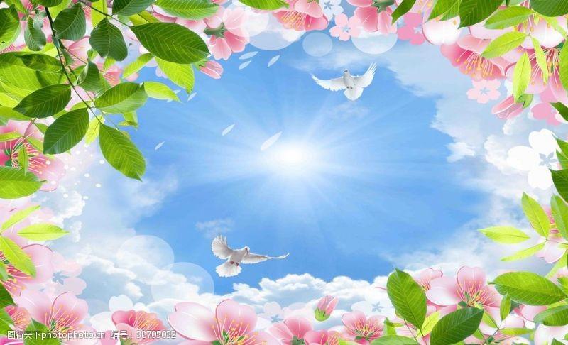 鸽子白云蓝天桃花吊顶