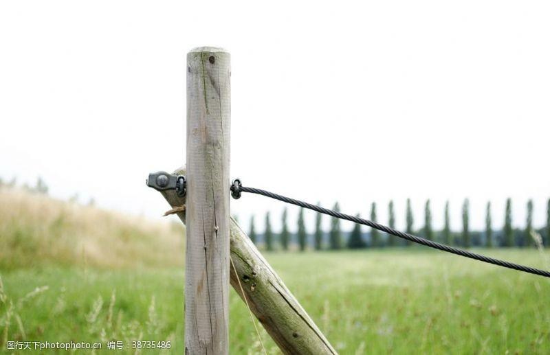 屏障草地边框