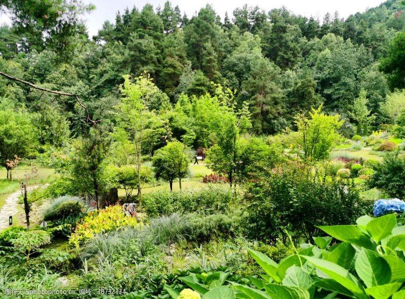 公园湖泊公园