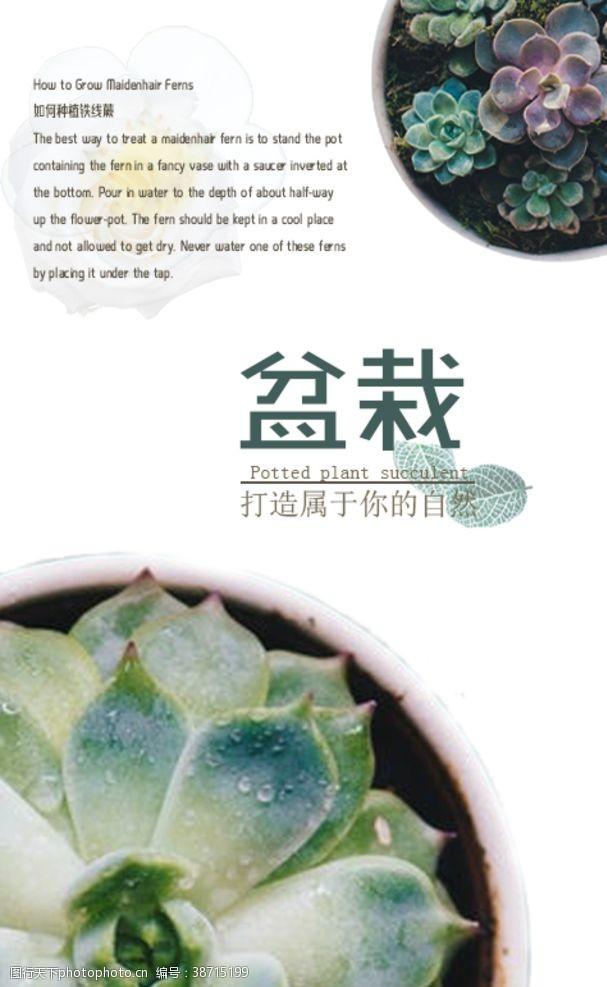 高档海报绿色多清新花卉园艺盆栽海报