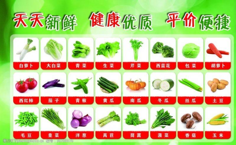 胡萝卜西红柿绿色背景蔬菜果蔬健康超市