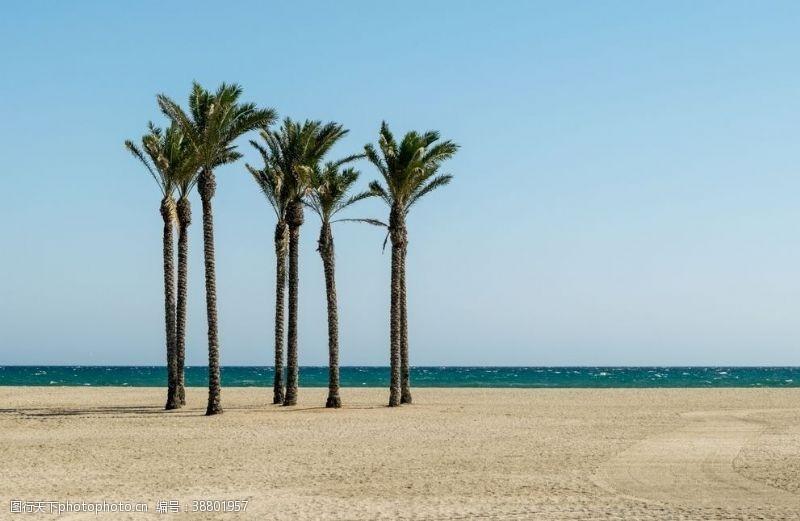 度假村海滩