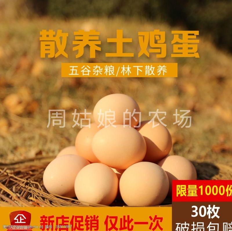 淘宝商城 鸡蛋淘宝主图图片