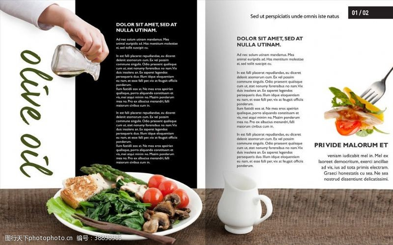 加盟手册美食画册