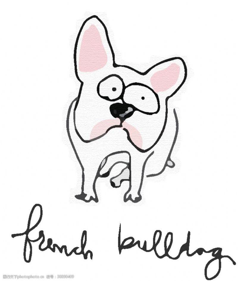 卡通斗牛犬