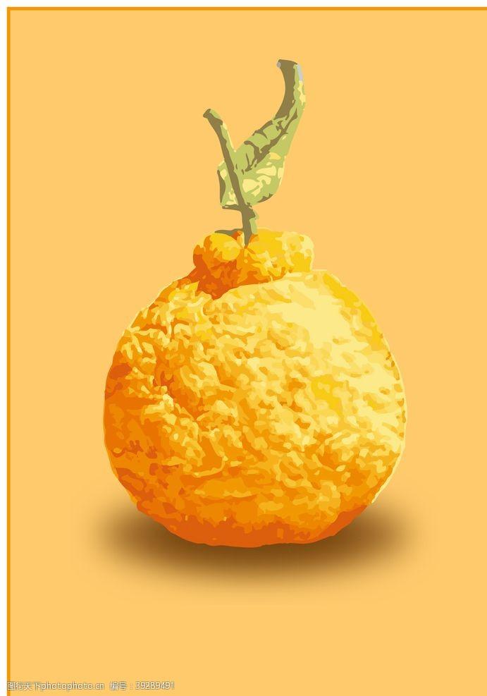 包装设计丑橘插图图片