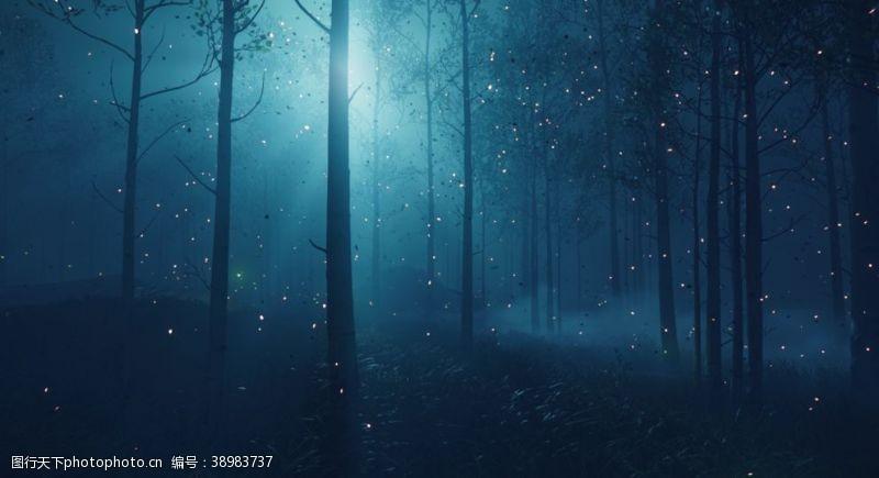 动漫场景 林间图片
