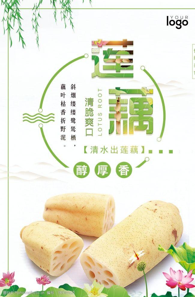 菜系簡約中國風蓮藕海報