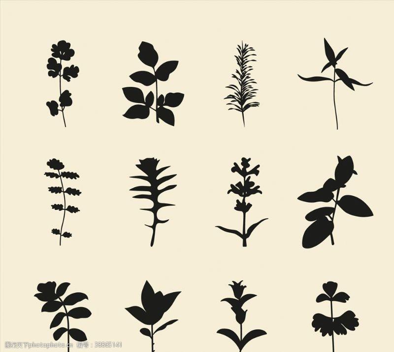 植物剪影背景