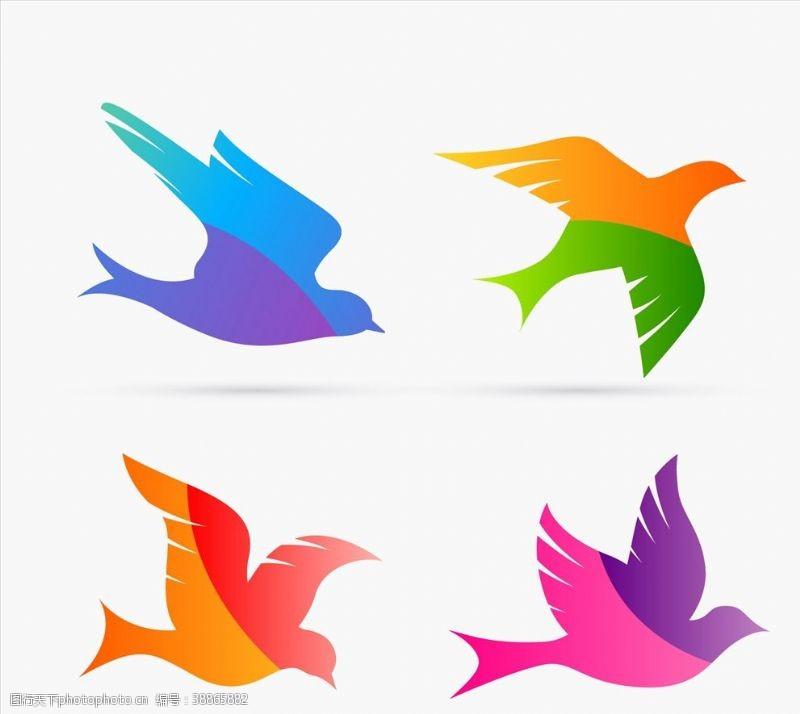 鸽子多彩鸟剪影