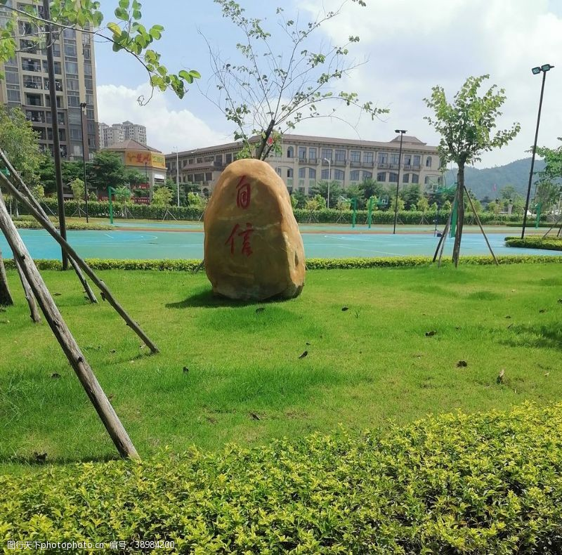 校园风光 自信石头像图片