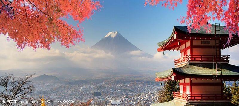 旅游展板日本樱花