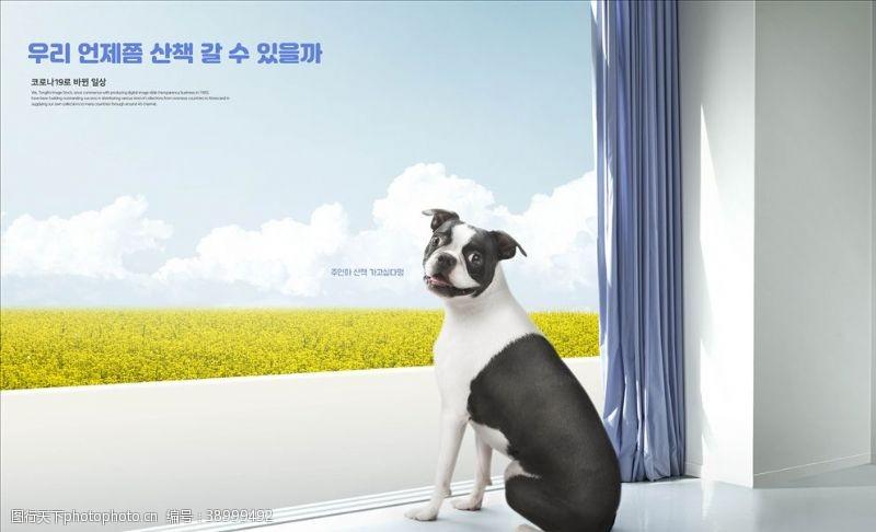 宠物之家 宠物店图片