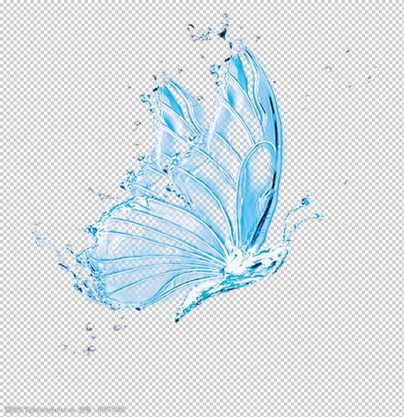 雨点 水蝴蝶图片