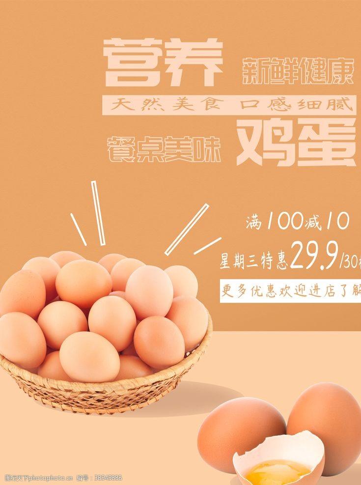鸡蛋展板 鸡蛋图片