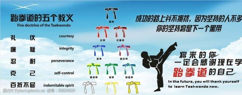 跆拳道彩页 跆拳道图片
