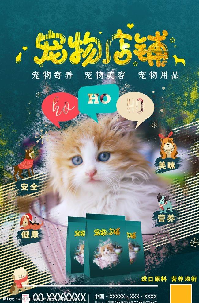 宠物之家 宠物猫粮图片