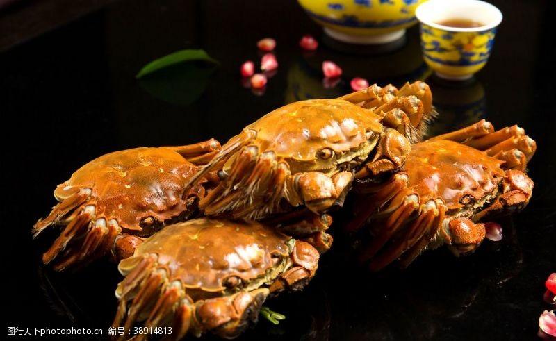 大闸蟹美食菜品图片
