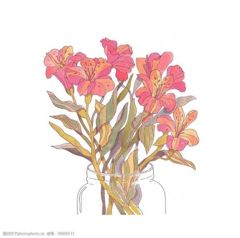 png透明底 手绘玻璃瓶插花图片