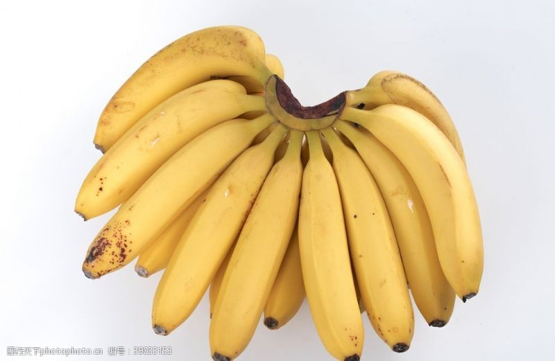 生物世界 香蕉图片