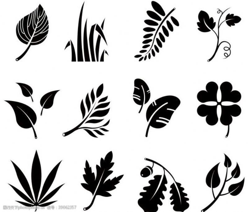 四叶草 各种矢量树叶图片