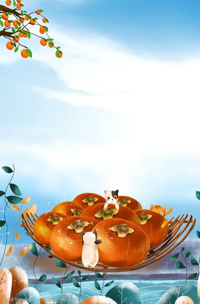 立秋秋分 柿子图片