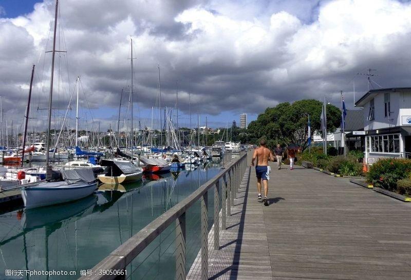 游人 奥克兰游艇码头风景图片