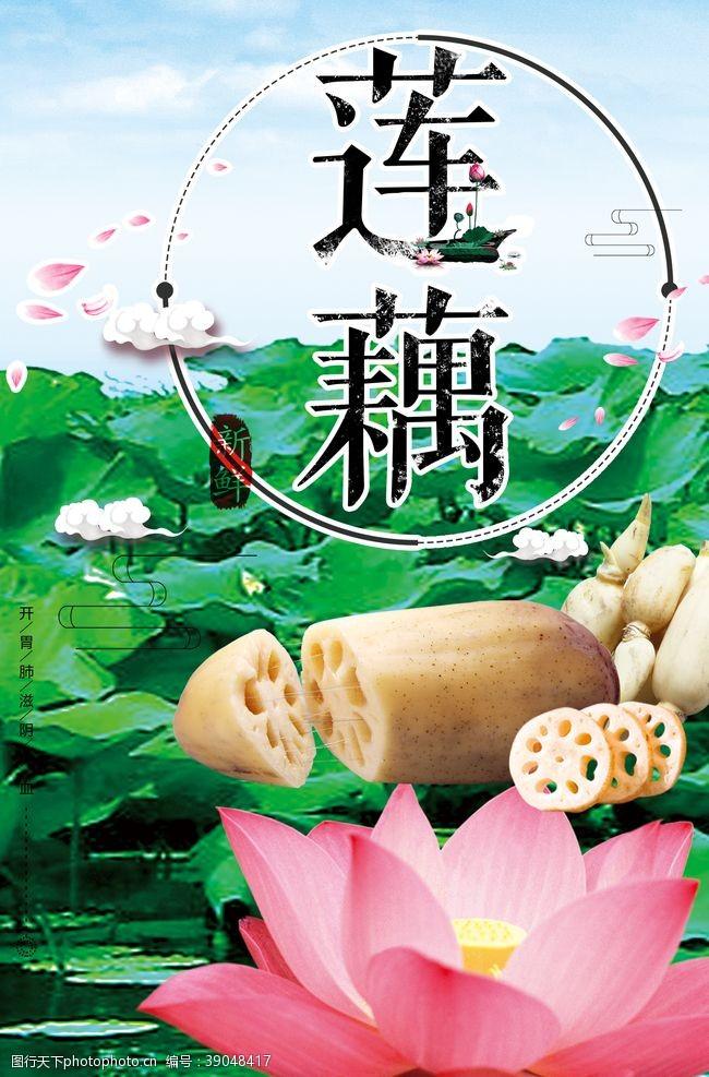菜系 洪湖蓮藕海報圖片