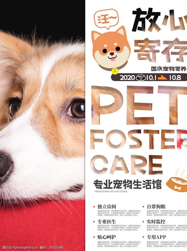 宠物广告 宠物寄存图片