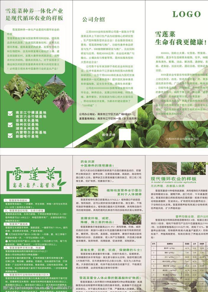 绿色折页 绿色三折页图片