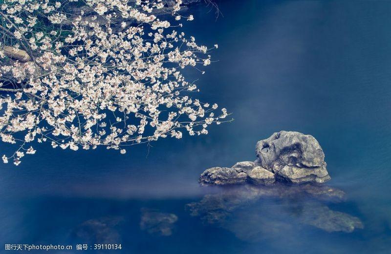 樱花山石旅游旅行海报素材图片