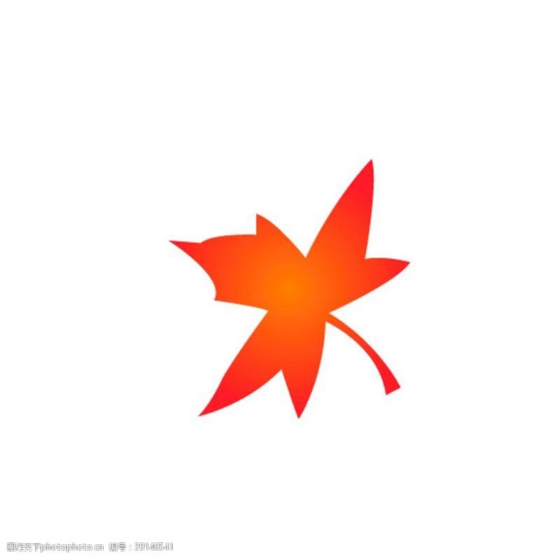 矢量设计 枫叶图片