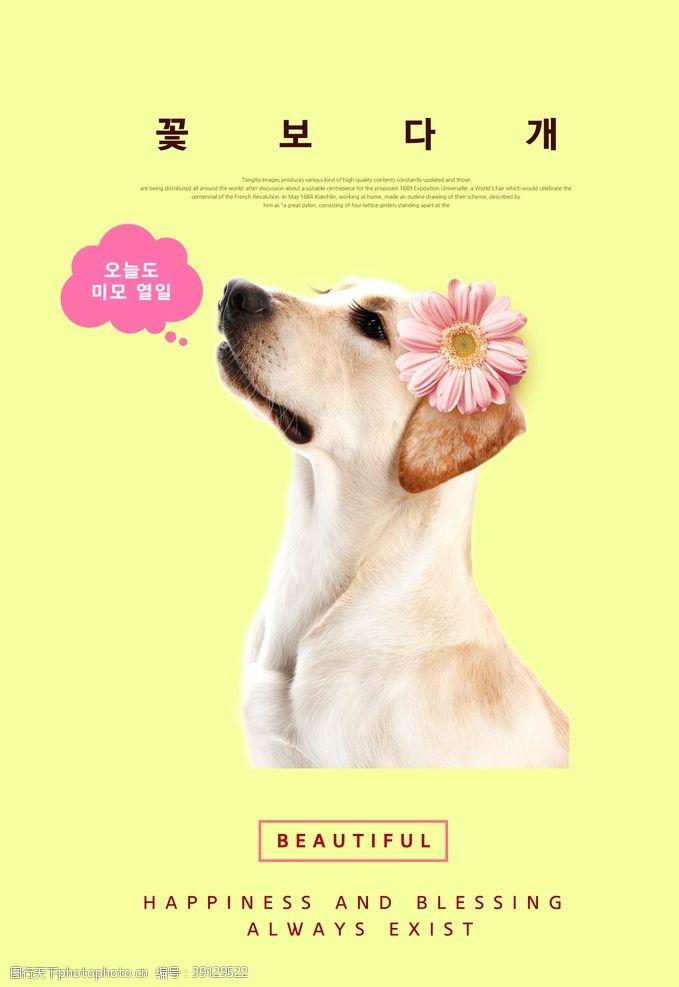 宠物生活馆 狗狗宠物促销海报图片