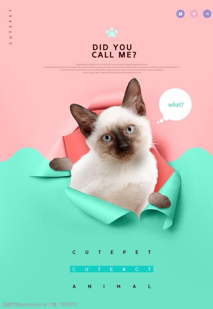 宠物生活馆 狗狗促销海报设计图片