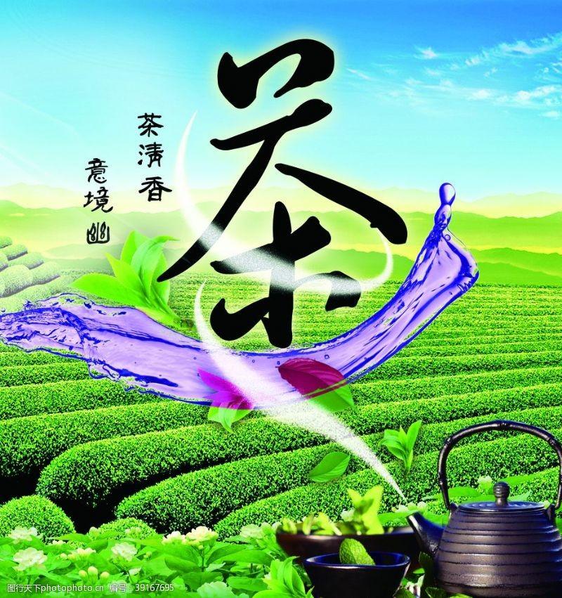 铁观音 茶叶图片